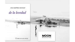 De La Levedad. Ana Martínez Mongay. Los libros del Gato Negro (2015). Reseña de Manu López Marañón.